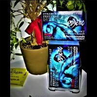 """Strange Electro Pop Festival"" Flyer / 2016"