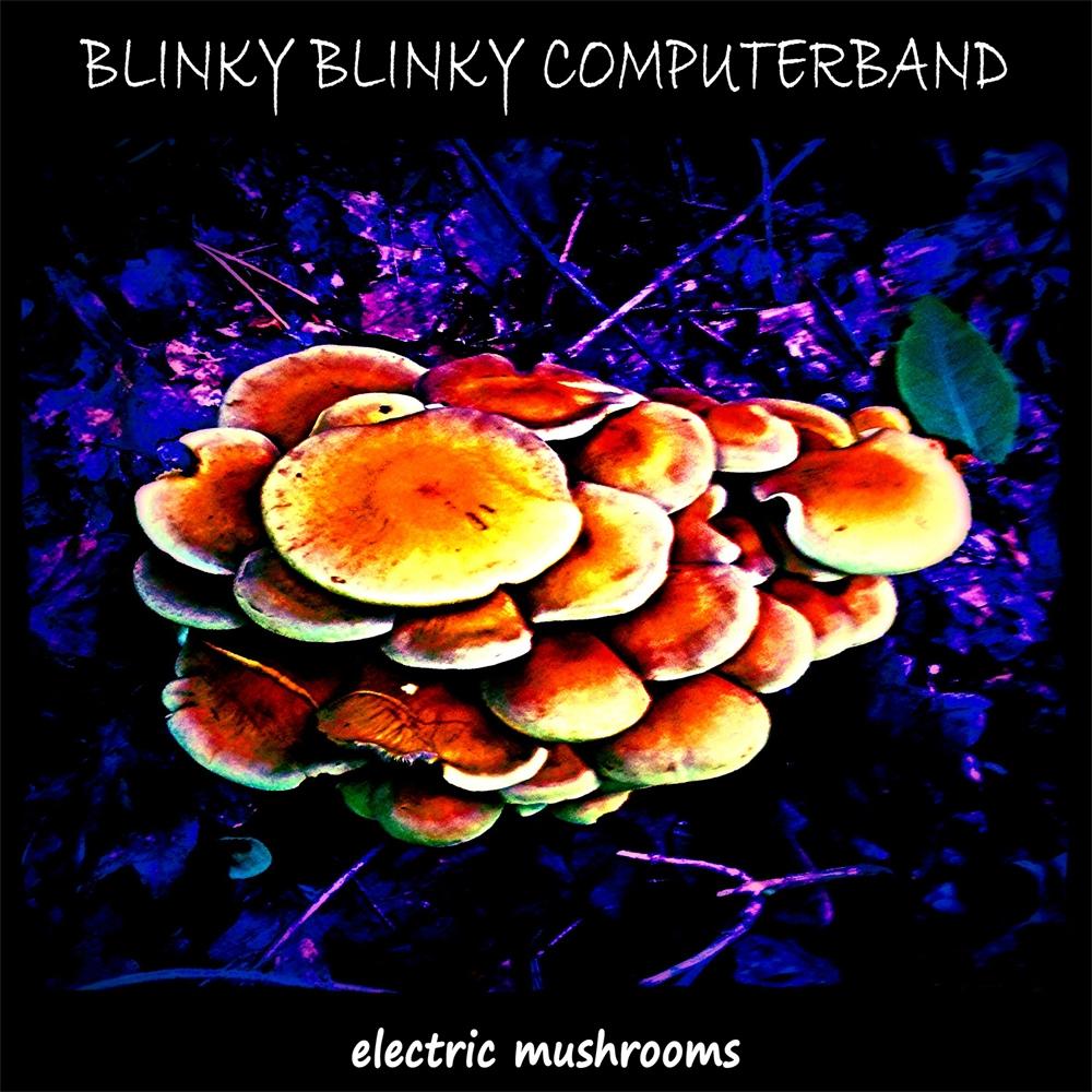 Electric Mushrooms / 2016